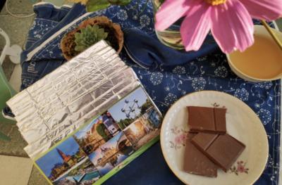 10x100g Chocolate bar MILK HAZELNUT